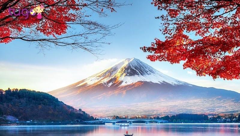 Nenkin Là Bảo Hiểm Lương Hưu, Bất Cứ Ai Làm Việc Tại Nhật Phải đóng